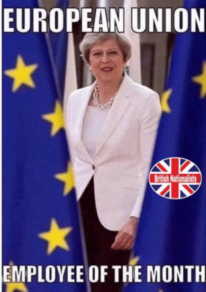Memes, British, and European Union: EUROPEAN UNION  British Nationalists  EMPLOYEE OF THE MONTH