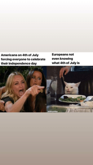 Drone, Independence Day, and My House: Europeans not  even knowing  what 4th of July is  Americans on 4th of July  forcing everyone to celebrate  their independence day  jandricphilipp Why is there a reaper drone circling over my house?!