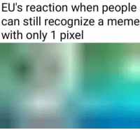 Meme, Pixel, and Can: EU's reaction when people  can still recognize a meme  with only 1 pixel