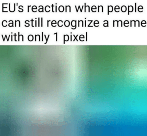 Meme, Pixel, and Can: EU's reaction when people  can still recognize a meme  with only 1 pixel What