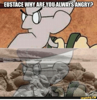 Happy Veterans/Remembrance Day.  ~Matt: EUSTACE WHY ARE YOUIALWAYS ANGRva  funny. Happy Veterans/Remembrance Day.  ~Matt
