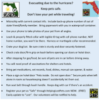 """Being Alone, Cats, and Driving: Evacuating due to the hurricane?  Keep pets safe.  Don't lose your pet while traveling!  ST CATS  O.  LOST  FLORIDA  PETS  . Microchip with current contact info. Include back-up phone number of out of  state friend/family member. Bring paperwork with you in waterproof container.  . Use your phone to take photos of your pet from all angles  . Leash & properly fitted collar with legible ID tag with cell phone number, NOT  home number, you won't be there. Harness or martingale collar recommended  . Crate your dog/cat. Be sure crate is sturdy and door securely fastened  . Check crate door/firm grip on leash before opening car doors or hotel door.  . After stopping for gas/food, be sure all pets are in car before driving away  . You will need proof of vaccinations for shelters and hotels  . Bring pet medications, vet records, food, dishes, manual can opener, & water.  . Place a sign on hotel door """"Pets inside. Do not open door."""" Secure pets when left  alone in room so housekeeping doesn't accidentally let them out  Run seat belt through leash handle. Keeps dog with car if there's an accident  . Register your pet as """"Safe"""" through HelpinglostPets.com NOW. (FREE)  Easily update to """"Lost"""". Our volunteers will be notified to help  PET Please Share !!!"""
