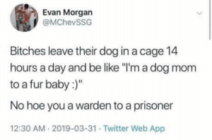 "Dog mom.: Evan Morgan  @MChevSSG  Bitches leave their dog in a cage 14  hours a day and be like ""I'm a dog mom  to a fur baby:  No hoe you a warden to a prisoner  12:30 AM 2019-03-31 Twitter Web App Dog mom."