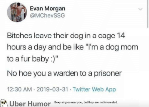 "failnation:  Dog mom: Evan Morgan  @MChevSSG  Bitches leave their dog in a cage 14  hours a day and be like ""I'm a dog mom  to a fur baby:)""  No hoe you a warden to a prisoner  12:30 AM 2019-03-31 Twitter Web App  Sexy singies near you, but they are not interested  Uber  Humor failnation:  Dog mom"