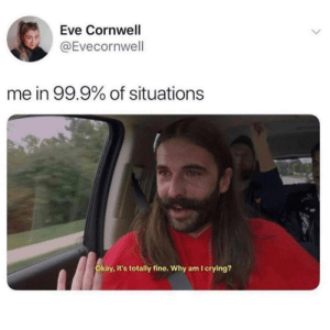 Why?: Eve Cornwell  @Evecornwell  me in 99.9% of situations  RAW  Okay, it's totally fine. Why am I crying? Why?