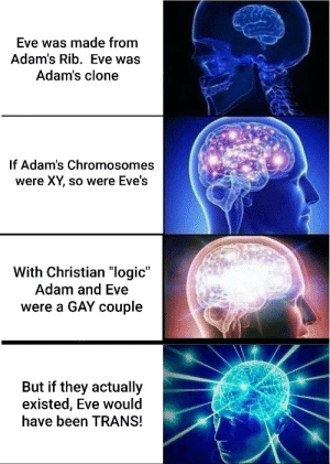"""It's just science: Eve was made from  Adam's Rib. Eve was  Adam's clone  If Adam's Chromosomes  were XY, so were Eve's  With Christian """"logic""""  Adam and Eve  were a GAY couple  But if they actually  existed, Eve would  have been TRANS! It's just science"""