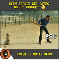 I think this picture Clicked at IIT KharagPur: EVEN GOOGLE CEO LOVES  GULLY CRICKET  Dis Page entertain u  PAGE  POWER OF INDIAN BLOOD  RTAI I think this picture Clicked at IIT KharagPur
