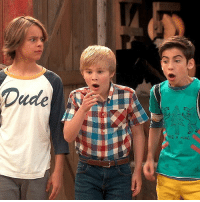 Memes, Watch, and 🤖: Even on the farm the Quads just can't stay out of trouble 😧 Watch a new NRDD tonight at 8p-7c!