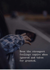 Taken: Even the strongest  feelings expire when  ignored and taken  for granted.