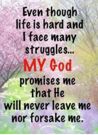 forsake: Even though  life is hard and  face many  struggles...  MY God  promises me  that He  will never leave me  nor forsake me.