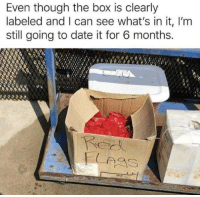 Life, Date, and Box: Even though the box is clearly  labeled and I can see what's in it, I'm  still going to date it for 6 months. My life so far.