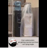 Be Like, Meme, and Memes: Even watercoolers  are getting married and here  i am dying single. Twitter: BLB247 Snapchat : BELIKEBRO.COM belikebro sarcasm meme Follow @be.like.bro