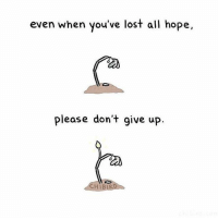 You've made it through 100% of your toughest days so far. Now isn't the time to give it. Pull up your boots by the straps and keep pushing! You can do it! | JeremyMcGilvrey: even when you've lost all hope,  please don't give up.  CHIB You've made it through 100% of your toughest days so far. Now isn't the time to give it. Pull up your boots by the straps and keep pushing! You can do it! | JeremyMcGilvrey