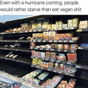 Shit, Vegan, and Hurricane: Even with a hurricane coming, people  would rather starve than eat vegan shit  2 That one aisle