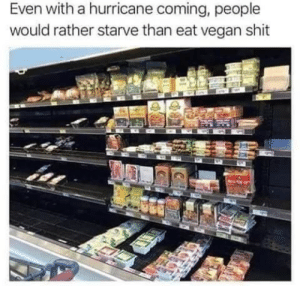 Show me your hurricane memes: Even with a hurricane coming, people  would rather starve than eat vegan shit Show me your hurricane memes