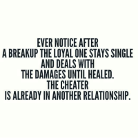 Memes, Singles, and Single: EVER NOTICE AFTER  A BREAKUP THE LOYAL ONE STAYS SINGLE  AND DEALS WITH  THE DAMAGES UNTIL HEALED  THE CHEATER  IS ALREADY IN ANOTHER RELATIONSHIP 😘😁
