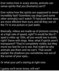 Ever Notice...: Ever notice how in scary stories, animals can  sense spirits that you (humans) can't?  Ever notice how the spirits are supposed to move  incredibly fast? Scientists say dogs (and some  other animals) can't watch TV because their eyes  are more efficient than ours, and all they see on  the TV is one picture or just static.  Basically, videos are made up of pictures running  at a high rate of speed, right? It would be like if  sped a video up 100x, all you would see is static,  right? Same with dogs. Now, what if spirits aren't  transparent? They're completely visible, but they  move too fast for us to see, that might be why  animals see them and we can't. That would  explain the shadows you sometimes see out of  the corner of your eyes...  Or what your pet's staring at rightnow.  guess we'll never know, will we? Ever Notice...