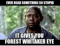 stupid: EVER READ SOMETHING SO STUPID  IT GIVES YOU  FOREST WHITAKER EYE