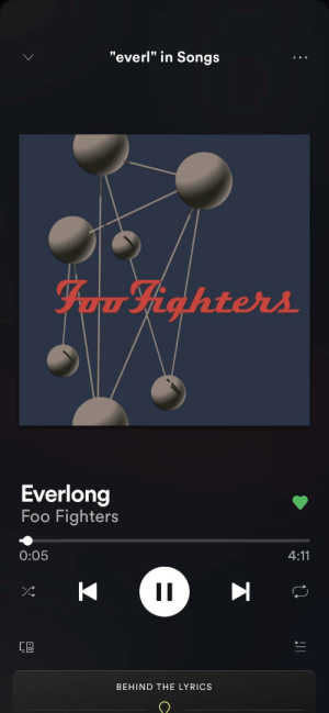 Fuck It All Came From Nothing LYRICS T Foo Fighters
