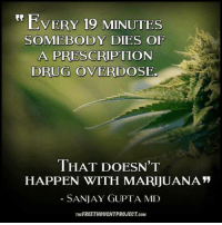 "Drugs, Memes, and Drug: EVERY 19 MINUTES  SOMEBODY DIES OF  A PRESCRIPTION  DRUG OVERDOSE.  THAT DOESN'T  HAPPEN WITH MARIJUANA""  SANJAY GUPTA MD  THEFREETHOUCHTPROJECT.coM"