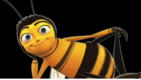 "every ""be"" in the song ""Rather Be"" replaced with Jerry Seinfeld screaming ""Bee!"" from Bee Movie.: every ""be"" in the song ""Rather Be"" replaced with Jerry Seinfeld screaming ""Bee!"" from Bee Movie."