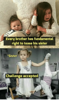sister: Every brother has fundamental  right to tease his sister  Sister  Challenge accepted