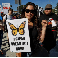 Family, Memes, and Justice: Every  Cr  DREAM  DE  RE  evco  #CLEAN  DREAM ACT  NOW! Yass! 💜🙌🏾✊🏾 @laurenjauregui marching with us and hundreds of other immigrant rights supporters and allies demanding a CleanDreamAct, an end to deportations, family reunification, and justice for all 11 million undocumented immigrants living in the country!