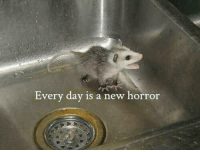 Nihilist: Every day is a new horror