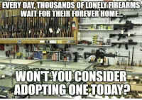 Memes, Forever, and Home: EVERY DAY THOUSANDS OFLONELY FIREARMS  WAIT FOR THEIR FOREVER HOME  WONTYOUCONSIDER  ADOPTINGONETODAYA DV6
