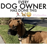 now.. y'all know you're guilty of this... if no one see's it happen then it never happened 👀🐕💩 W- @bubba.lucky 🎥🎬 @itsjetography (iPhone 7 camera) dog dogsofinsta dogs comedy poop thatstuffstinks patdlucky bubba tyheadlee tagafriend tagsforlikes: EVERY  DOG OWNER  HAS DONE THIS  Headlee now.. y'all know you're guilty of this... if no one see's it happen then it never happened 👀🐕💩 W- @bubba.lucky 🎥🎬 @itsjetography (iPhone 7 camera) dog dogsofinsta dogs comedy poop thatstuffstinks patdlucky bubba tyheadlee tagafriend tagsforlikes