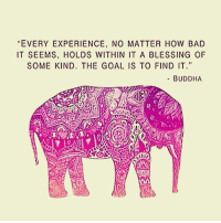 """Memes, Buddha, and 🤖: EVERY EXPERIENCE, NO MATTER HOW BAD  IT SEEMS, HOLDS WITHIN IT A BLESSING OF  SOME KIND. THE GOAL IS TO FIND IT.""""  BUDDHA Nothing ever goes away until it has taught us what we need to know. Pema Chodron. awakespiritual"""