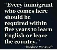 "Memes, American, and American Flag: ""Every immigrant  who comes here  should be  required within  five years to learn  English or leave  the country.""  Theodore Roosevelt Agree or disagree?  ""In the first place, we should insist that if the immigrant who comes here in good faith becomes an American and assimilates himself to us, he shall be treated on an exact equality with everyone else, for it is an outrage to discriminate against any such man because of creed, or birthplace, or origin.   But this is predicated upon the person's becoming in every facet an American, and nothing but an American...There can be no divided allegiance here.   Any man who says he is an American, but something else also, isn't an American at all.   We have room for but one flag, the American flag... We have room for but one language here, and that is the English language... and we have room for but one sole loyalty and that is a loyalty to the American people.""  Theodore Roosevelt 1907"