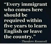 """AGREE!: """"Every immigrant  who comes here  should be  required within  five years to learın  English or leave  the country.""""  Theodore Roosevelt AGREE!"""