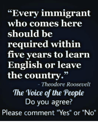 """DO YOU AGREE? #NOAMNESTY  FROM OUR FRIENDS AT The voice of the people: """"Every immigrant  who comes here  should be  required within  five years to learn  English or leave  the country.""""  Theodore Roosevelt  The Voice of the People  Do you agree?  Please comment """"Yes"""" or """"No"""" DO YOU AGREE? #NOAMNESTY  FROM OUR FRIENDS AT The voice of the people"""