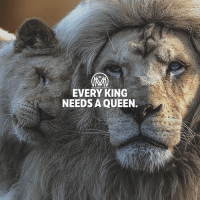 A king is not complete without his queen. TAG your queen! 👸👇 king queen millionairementor: EVERY KING  NEEDS A QUEEN. A king is not complete without his queen. TAG your queen! 👸👇 king queen millionairementor