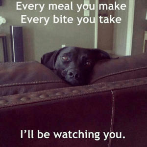 He'll be watching: Every meal you make  Every bite you take  l'll be watching you. He'll be watching