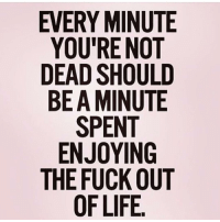 @wealthandfitness ☝️ excuse the profanity, but this!: EVERY MINUTE  YOU'RE NOT  DEAD SHOULD  BE A MINUTE  SPENT  ENJOYING  THE FUCK OUT @wealthandfitness ☝️ excuse the profanity, but this!