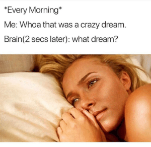 Crazy, Dank, and Memes: *Every Morning*  Me: Whoa that was a crazy dream  Brain (2 secs later): what dream? meirl by xsnoopycakesx FOLLOW HERE 4 MORE MEMES.
