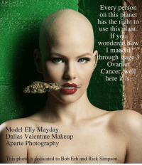 Makeup, Memes, and Cancer: Every person  on this planet  has the right to  use this plant.  If you  wondered how  I ma  it  hrough stage 3  Ovarian  Cancer  elh  here it is  Model Elly Mayday  Dallas Valentine Makeup  Aparte Photography  This photo is dedicated to Bob Erb and Rick Simpson.