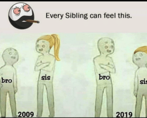 Facebook, Meme, and Omg: Every Sibling can feel this.  bro  sis  bro  sis  2009  2019 Omg this is so relatable (meme was cropped like this on facebook)