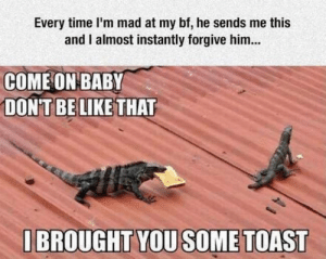 Be Like, Time, and Don't Be Like: Every time I'm mad at my bf, he sends me this  and I almost instantly forgive him...  COME ON BABY  DON'T BE LIKE THAT  IBROUGHT YOUSOME TOAST Damn. I couldnt resist this either