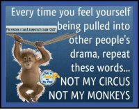 Memes, 🤖, and Drama: Every time you feel yourself  being pulled into  FACEBOOK COMMAUGHOUTLOUDLy 247  other people's  drama, repeat  these words.  NOT MY CIRCUS So true don't let a anyone pull you down some people can't stand to see someone happy They want you as miserable as they are.