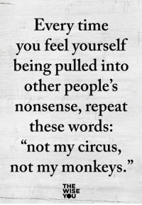 """Memes, Time, and Nonsense: Every time  you feel yourself  being pulled into  other people's  nonsense, repeat  these words:  """"not my circus,  not my monkevs.""""  THE  WISE  YOU <3"""