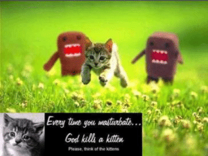 tine: Every tine you masturbat...  God kills a kitten  Please, think of the kitens