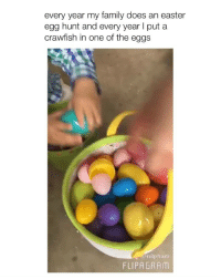 Easter, Family, and Girl Memes: every year my family does an easter  egg hunt and every year I put a  crawfish in one of the eggs  @n8pham  FLIPAGRAM LMFAOO (via: @-n8_pham)