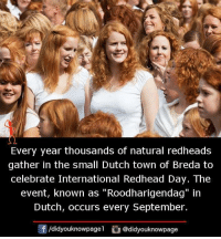"Memes, Dutch Language, and International: Every year thousands of natural redheads  gather in the small Dutch town of Breda to  celebrate International Redhead Day. The  event, known as ""Roodharigendag"" in  Dutch, occurs every September.  /didyouknowpagel @didyouknowpage"
