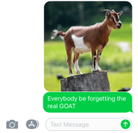GOAT: Everybody be forgetting the  real GOAT  O A(Text Message