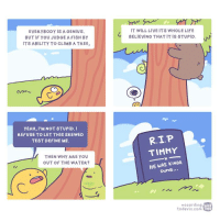 Some Albert Einstein's quote inspiration for you :)) #linewebtoon: EVERYBODY IS A GENIUS.  BUT IF YOU JUDGE A FISH BY  ITS ABILITY TO CLIMB A TREE,  YEAH, I'M NOT STUPID. I  REFUSE TO LET THIS SKEWED  TEST DEFINE ME.  THEN WHY ARE YOU  OUT OF THE WATER?  IT WILL LIVE ITS WHOLE LIFE  BELIEVING THAT IT IS STUPID  N  TIMMY  HE WAS KINDA  DUMB  according  WEB  TOON  ta Some Albert Einstein's quote inspiration for you :)) #linewebtoon