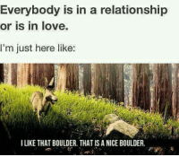 That Is A Nice Boulder: Everybody is in a relationship  or is in love.  I'm just here like  I LIKE THAT BOULDER. THAT IS A NICE BOULDER.