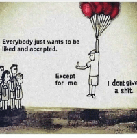 Memes, Shit, and Accepted: Everybody just wants to be  liked and accepted.  Except  for me  I dont give  a shit. 😂😂😂😂😂 not even a little bit Via @diva_tomboyish2